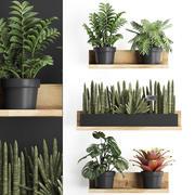 Plant set wall decor vertical garden 401 3d model