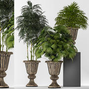 rośliny 261 3d model