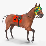 Bay Racehorse Rigged 3d model