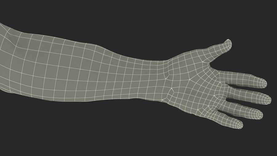 Male Arm Full Anatomy and Skin royalty-free 3d model - Preview no. 43