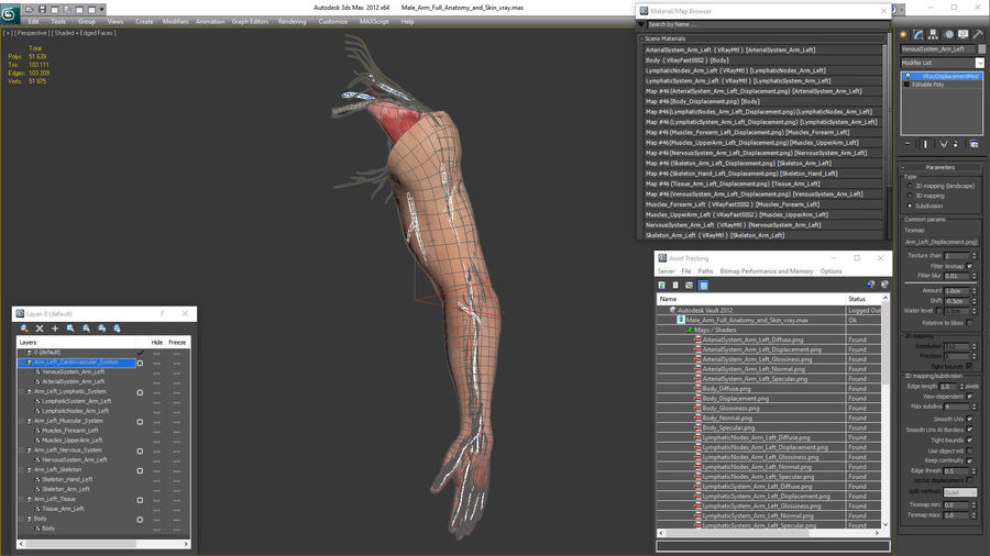 Male Arm Full Anatomy and Skin royalty-free 3d model - Preview no. 38