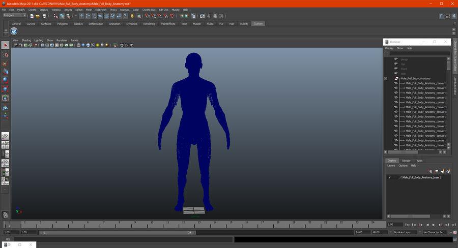 Анатомия мужского тела royalty-free 3d model - Preview no. 89
