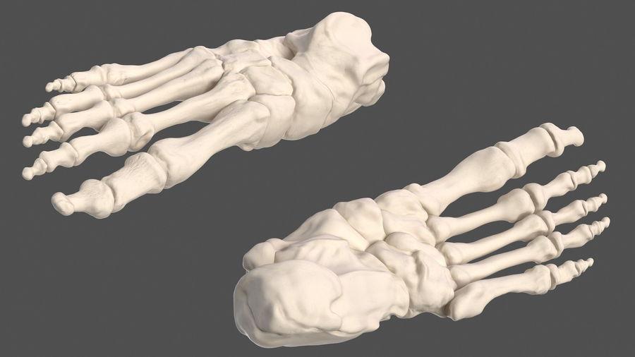 Анатомия мужского тела royalty-free 3d model - Preview no. 79