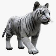 Pele de bebê tigre branco 3d model