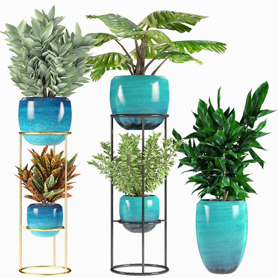 Kolekcje Rośliny 07 royalty-free 3d model - Preview no. 2