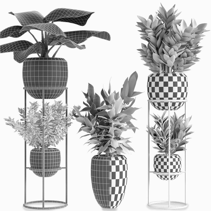 Kolekcje Rośliny 07 royalty-free 3d model - Preview no. 5