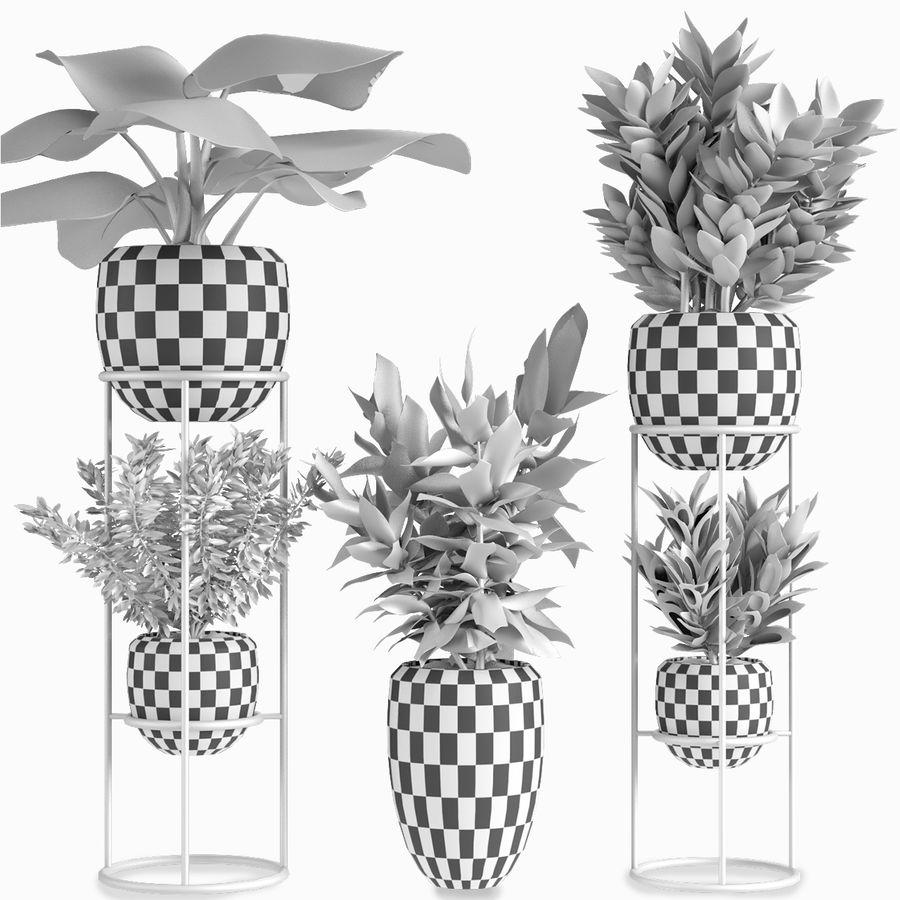 Kolekcje Rośliny 07 royalty-free 3d model - Preview no. 4