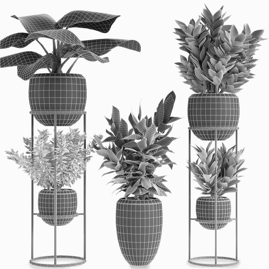 Kolekcje Rośliny 07 royalty-free 3d model - Preview no. 3