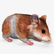 Hamster Animated 3d model