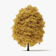 12 Meter-Herbst-Spitzahornbaum 3d model