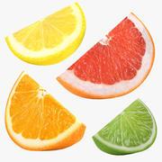 Citrus Slice Collection 3d model