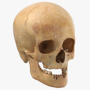 Crânio feminino humano com mandíbula danificada 02 3d model