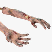 Bloody Zombie Arms Rigged for Cinema 4D 3d model