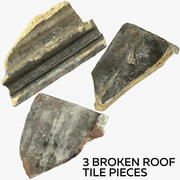 3 Broken Roof Tile Pieces 3d model