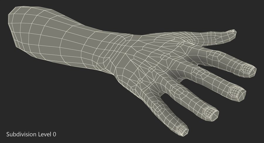 Female Hand with Short Nails Rigged for Cinema 4D royalty-free 3d model - Preview no. 18