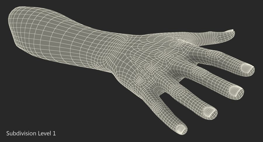 Female Hand with Short Nails Rigged for Cinema 4D royalty-free 3d model - Preview no. 19
