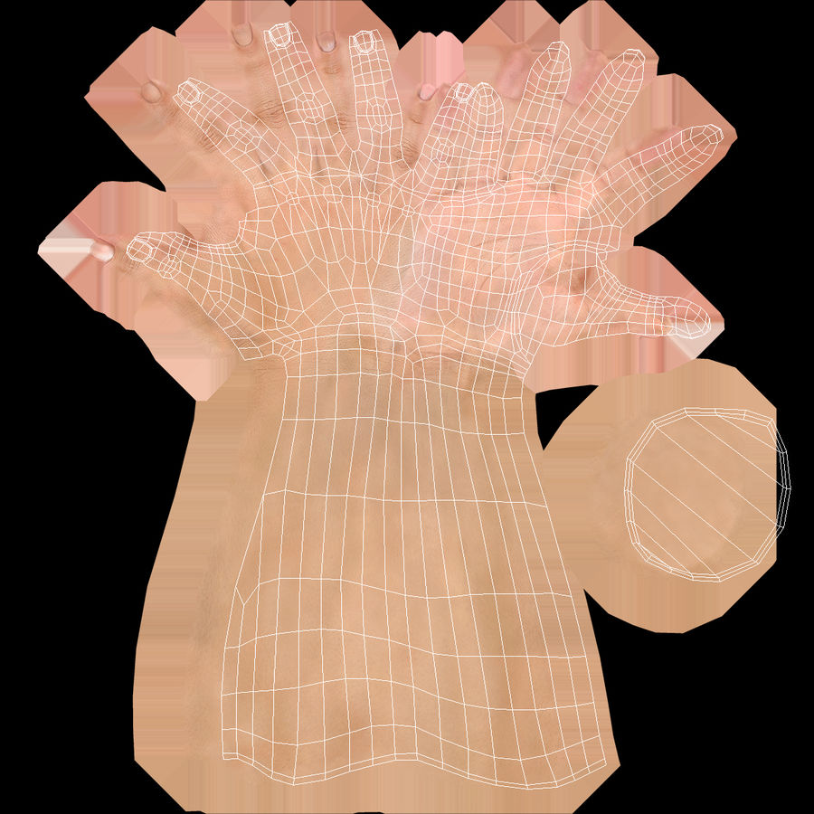 Female Hand with Short Nails Rigged for Cinema 4D royalty-free 3d model - Preview no. 20