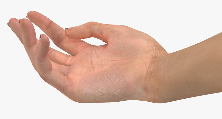 Female Hand with Short Nails Rigged for Cinema 4D royalty-free 3d model - Preview no. 4