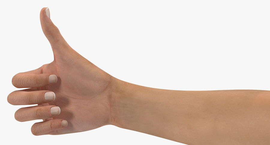 Female Hand with Short Nails Rigged for Cinema 4D royalty-free 3d model - Preview no. 12