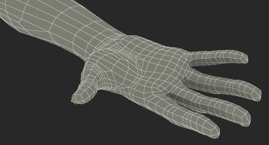 Female Hand with Short Nails Rigged for Cinema 4D royalty-free 3d model - Preview no. 22