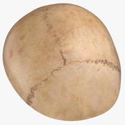 Menselijke schedel (schedel) 02-delig 3d model