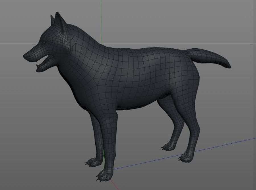 Wolf Rigged royalty-free 3d model - Preview no. 18