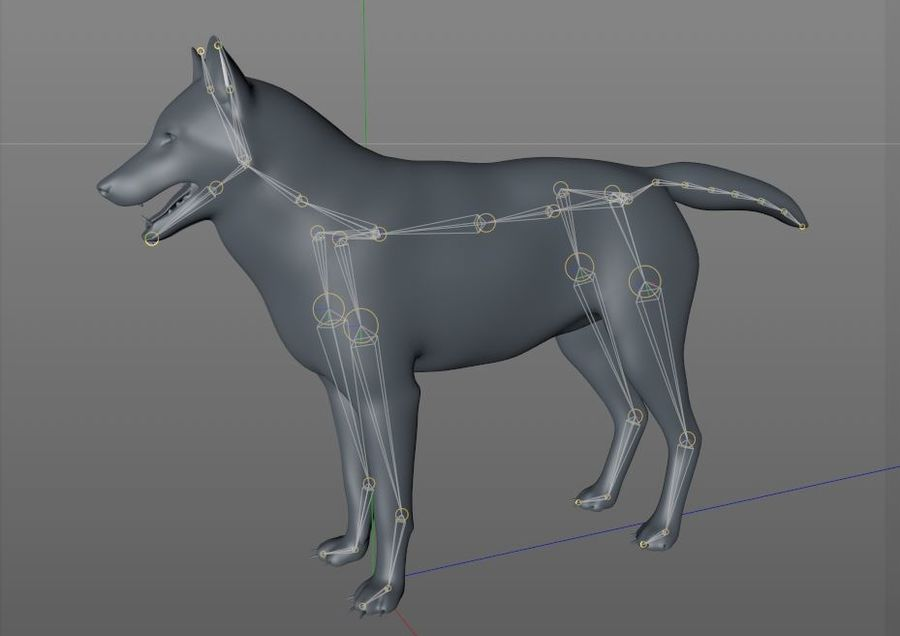 Wolf Rigged royalty-free 3d model - Preview no. 16