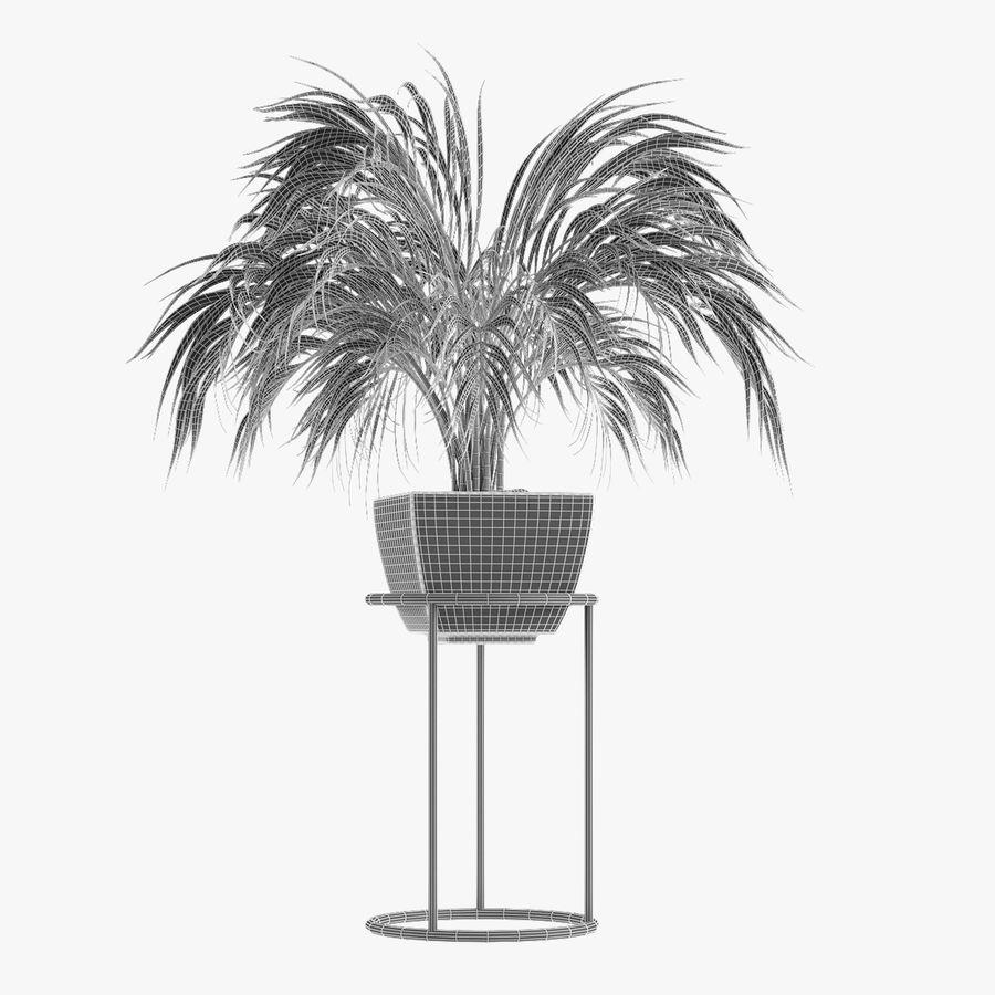 Kolekcje Rośliny 08 royalty-free 3d model - Preview no. 8