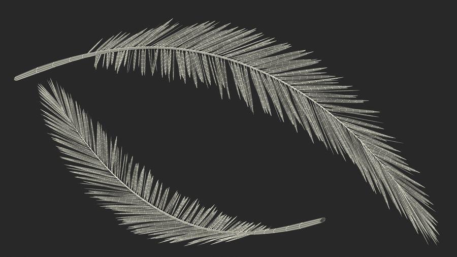 Palm Branch royalty-free 3d model - Preview no. 16