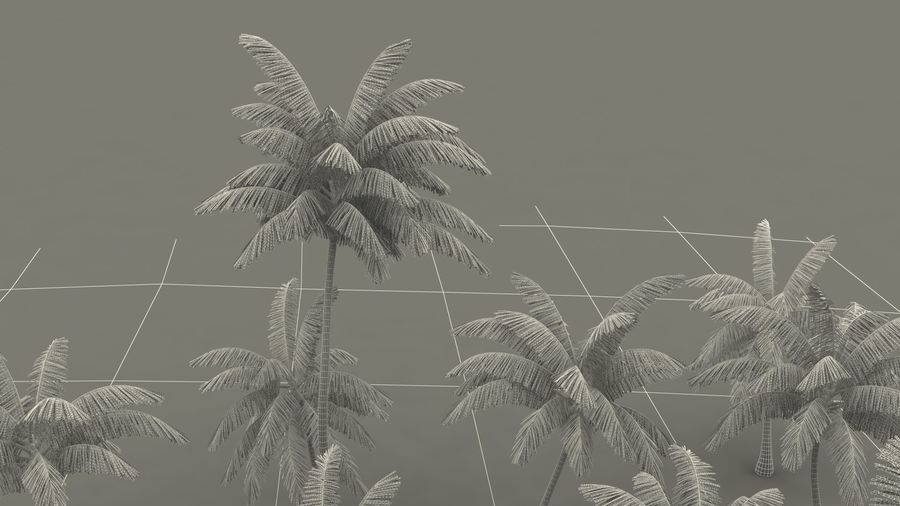 Tropical Island with Palm Trees royalty-free 3d model - Preview no. 21