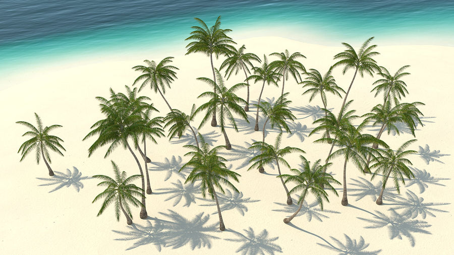 Tropical Island with Palm Trees royalty-free 3d model - Preview no. 6