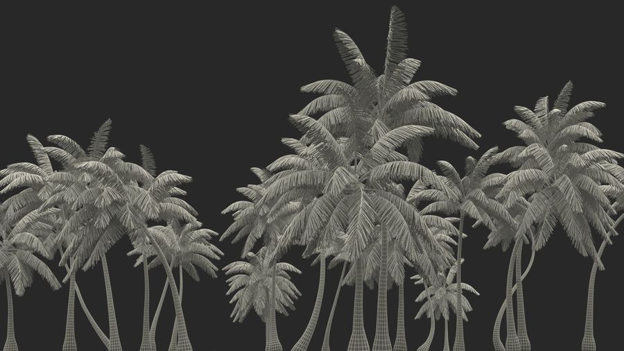 Tropical Island with Palm Trees royalty-free 3d model - Preview no. 22