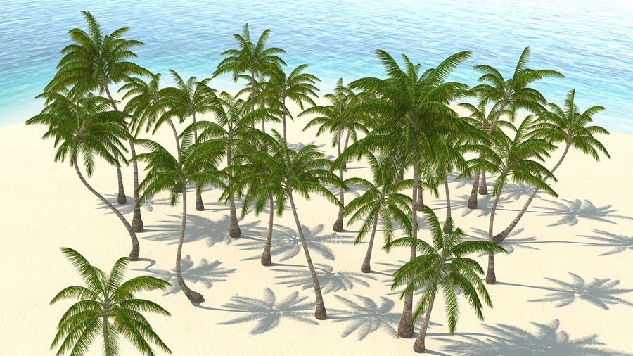 Tropical Island with Palm Trees royalty-free 3d model - Preview no. 7
