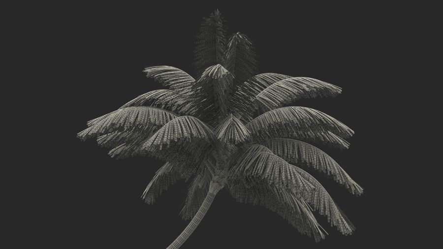Desert Tropical Island with Palm Tree royalty-free 3d model - Preview no. 20