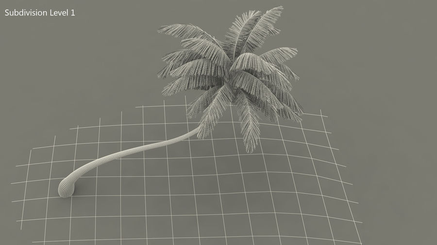 Desert Tropical Island with Palm Tree royalty-free 3d model - Preview no. 12