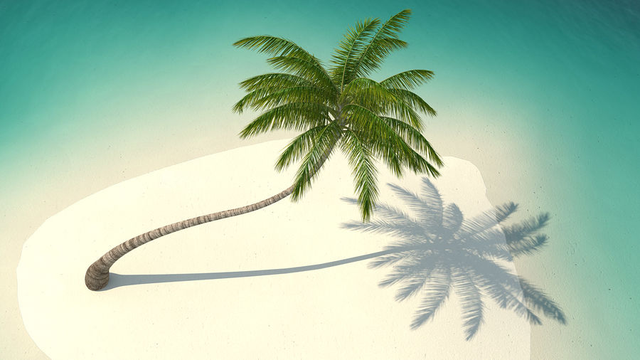 Desert Tropical Island with Palm Tree royalty-free 3d model - Preview no. 6