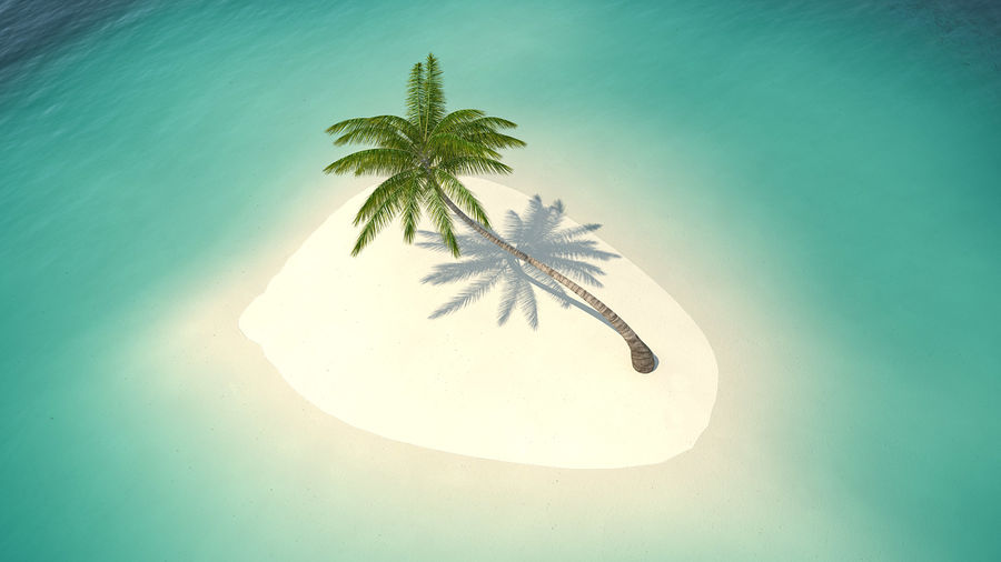 Desert Tropical Island with Palm Tree royalty-free 3d model - Preview no. 5