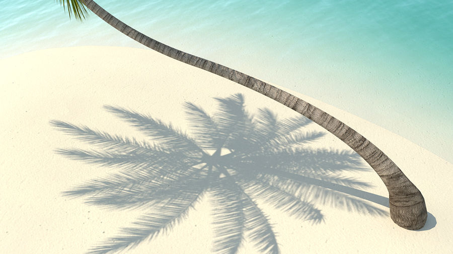Desert Tropical Island with Palm Tree royalty-free 3d model - Preview no. 8