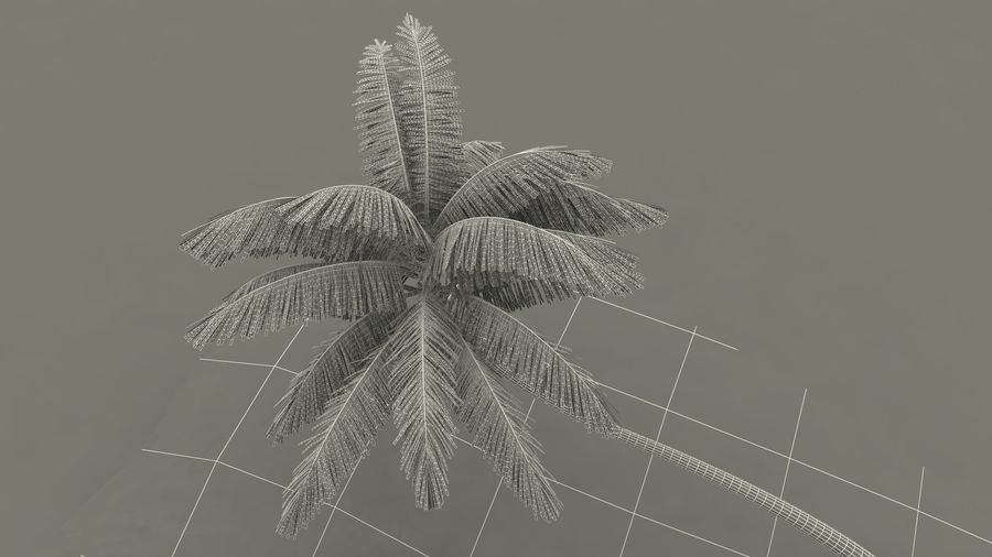 Desert Tropical Island with Palm Tree royalty-free 3d model - Preview no. 21