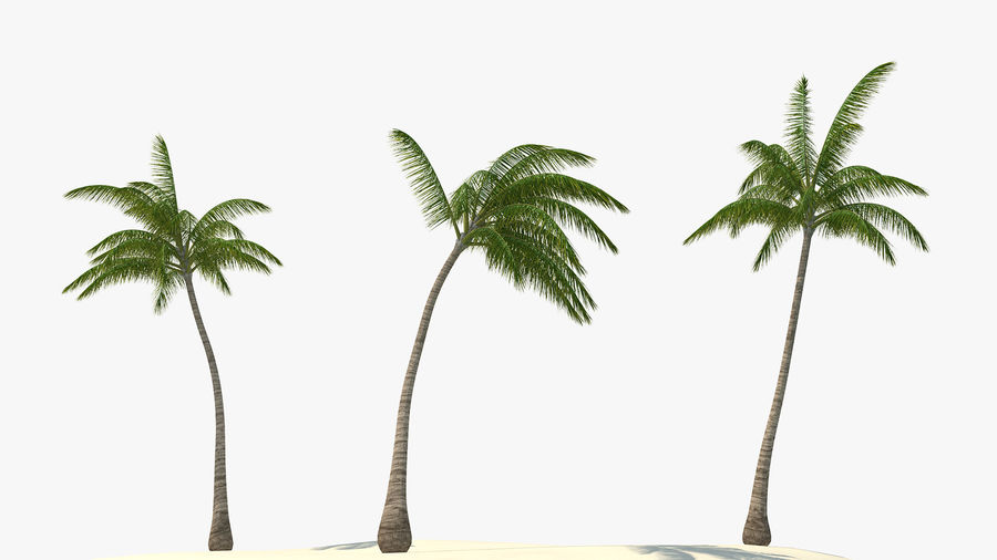 Small Island in Ocean with Palms royalty-free 3d model - Preview no. 8
