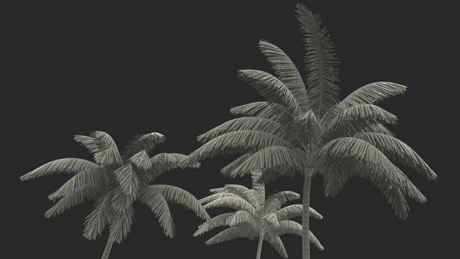 Small Island in Ocean with Palms royalty-free 3d model - Preview no. 18