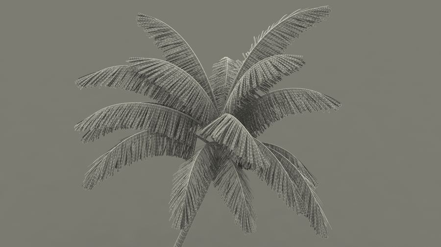 Small Island in Ocean with Palms royalty-free 3d model - Preview no. 19