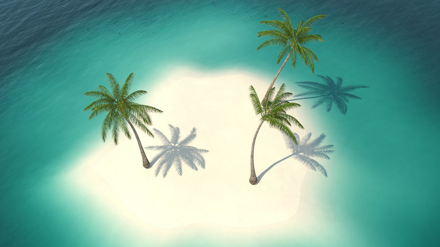 Small Island in Ocean with Palms royalty-free 3d model - Preview no. 5