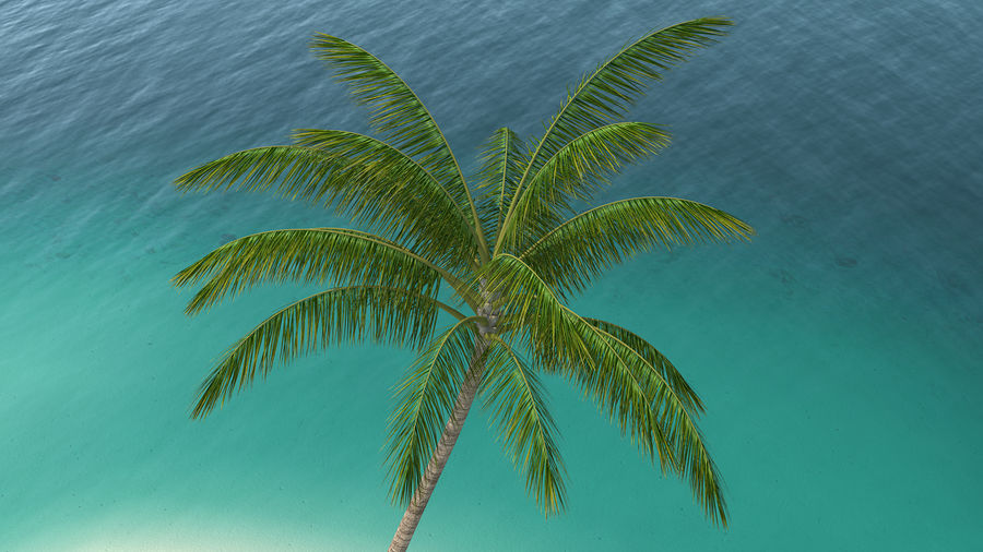 Small Island in Ocean with Palms royalty-free 3d model - Preview no. 7