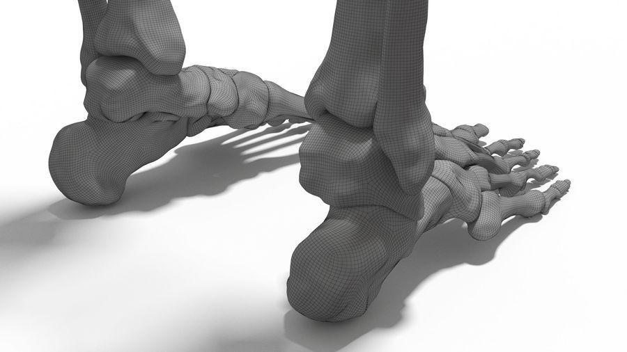 Leg Skeleton royalty-free 3d model - Preview no. 13
