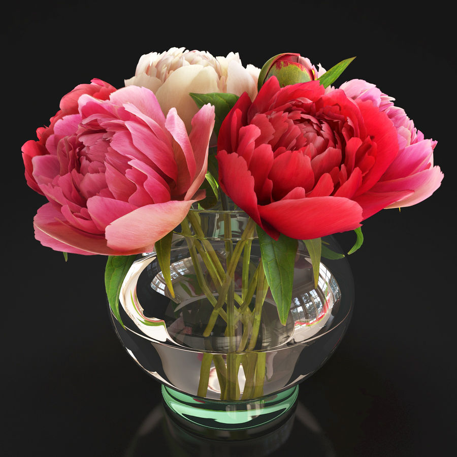 Flowers Peonies 3D model royalty-free 3d model - Preview no. 1