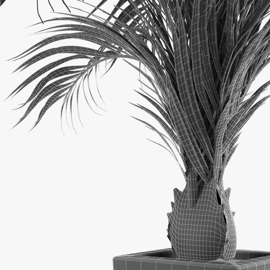 Realistic Palm Garden royalty-free 3d model - Preview no. 6