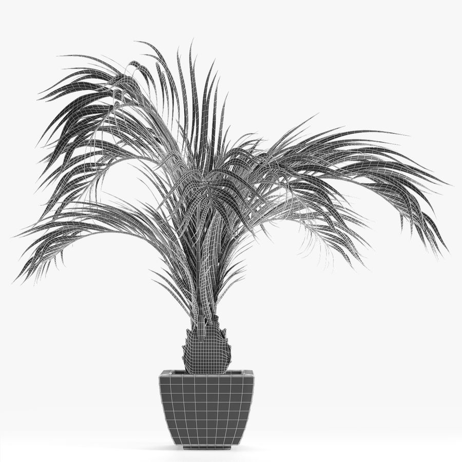 Realistic Palm Garden royalty-free 3d model - Preview no. 7