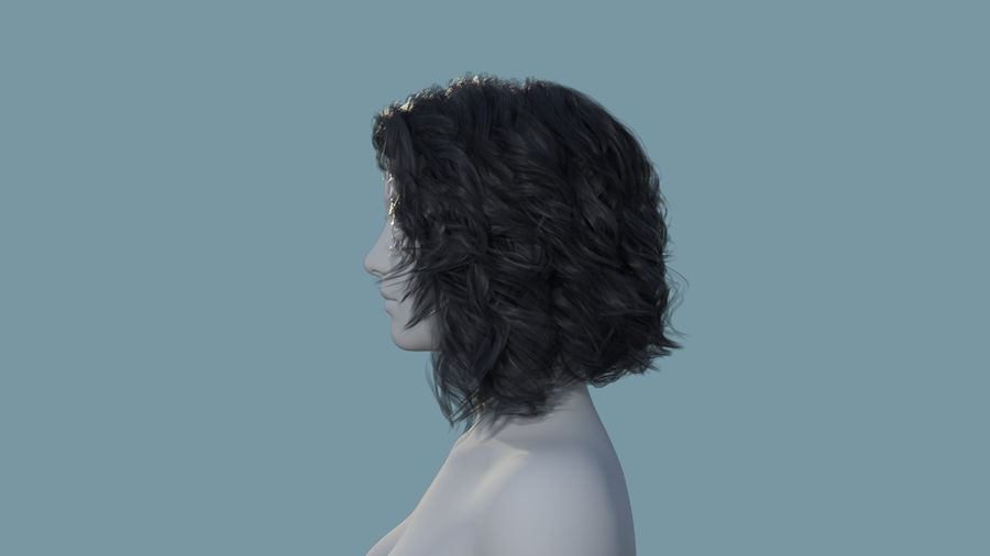 Realistic Female Polygon Long Hair 34 royalty-free 3d model - Preview no. 3
