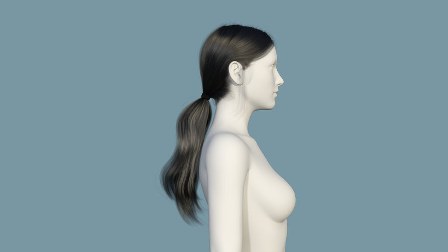 Realistic Female Polygon Long Hair 35 royalty-free 3d model - Preview no. 5